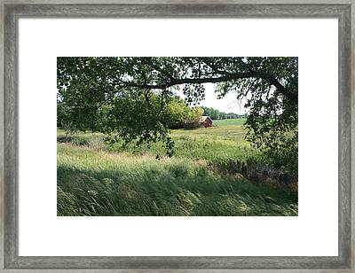 Shaded View - Full Color Framed Print