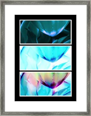 Shades Of Colour 2 Framed Print