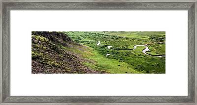 Shades Of Green Framed Print by Florian Rodarte