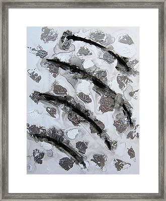Shades Of Grey 4 Framed Print