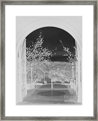 Framed Print featuring the photograph Shades Of Grey by Carol Lynn Coronios