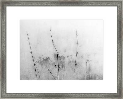 Shades Of Grey Framed Print