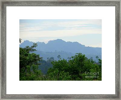Shades Of Honduran Blue Framed Print by Lew Davis