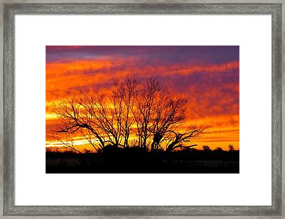 Shades Of Morning Framed Print by David  Norman