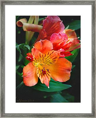 Shades Of Orange Framed Print