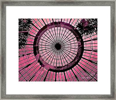 Rose Escape Framed Print