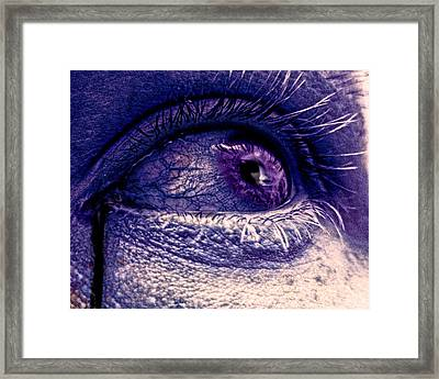 Shades Of Sympathy Framed Print