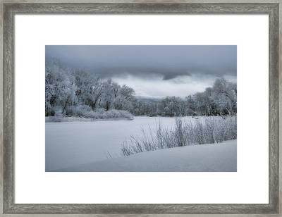 Shades Of Winter Framed Print by Ellen Heaverlo