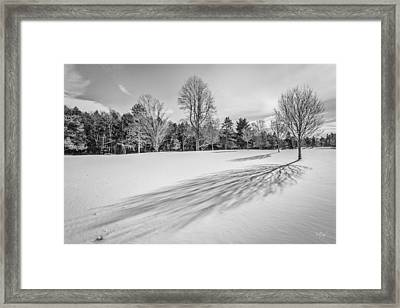 Shades Of Winter Framed Print by Everet Regal