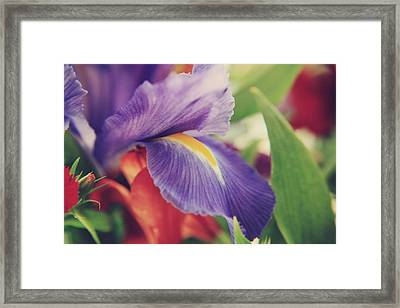Shades Of You And Me Framed Print by Laurie Search