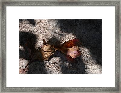 Shading Framed Print by Michelle Meenawong