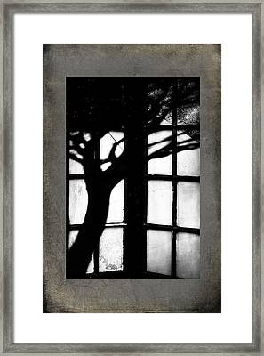 Shadow Framed Print by Bobbi Feasel