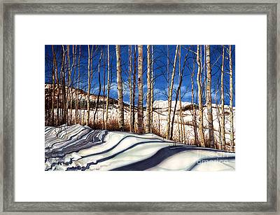 Shadow Dance Framed Print by Barbara Jewell