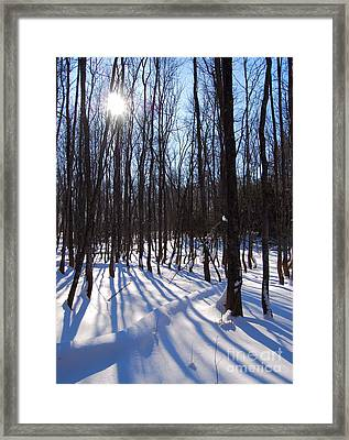 Shadow Dance Framed Print by Jim Rossol