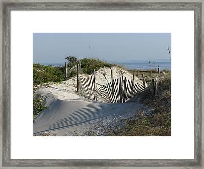 Shadow Fence Framed Print