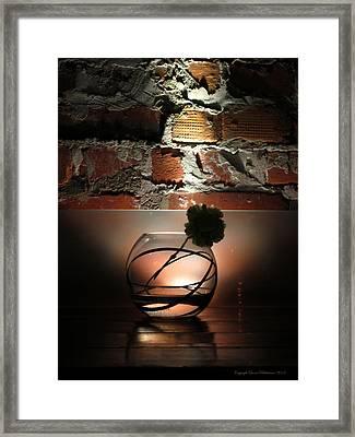 Shadow Flower Framed Print