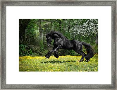 Shadow Liberty Framed Print by Fran J Scott