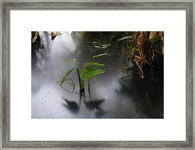 Shadow Mirror Reflection Framed Print