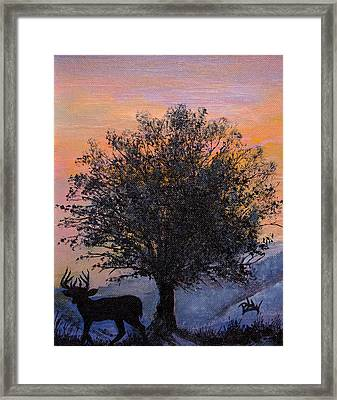 Shadow Of Courage Framed Print by Barbara Willms