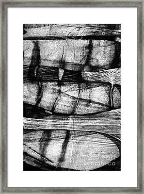 Shadow Of The Glass Object Framed Print by Elena Lir-Rachkovskaya