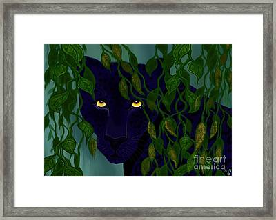 Shadow Of The Rainforest Framed Print by Nick Gustafson