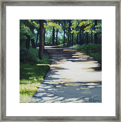 Shadow Path Framed Print by Carlynne Hershberger