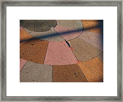 Shadow Play 2 Framed Print by Wendy J St Christopher