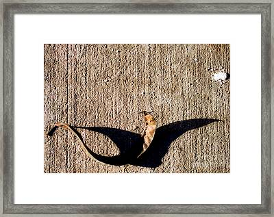 Shadow Play - Heron Framed Print