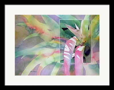 Epiphyte Framed Prints