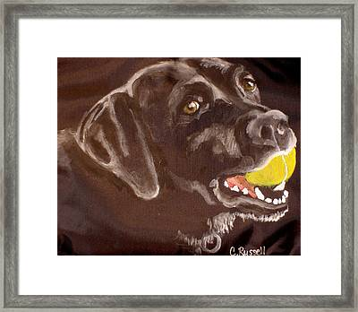 Shadow With Ball Framed Print