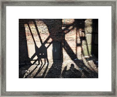 Shadowcat Framed Print