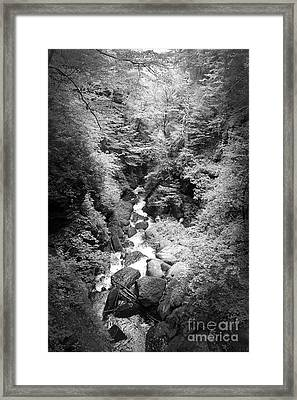 Shadowed Stream Framed Print by Paul Cammarata