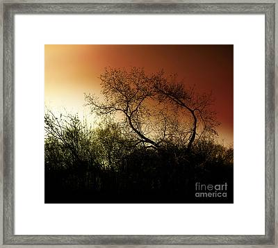 Shadowlands 9 Framed Print by Bedros Awak