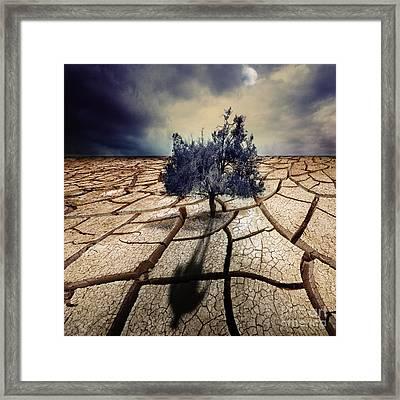 Shadowmoon Framed Print