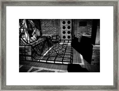 Shadowplay Framed Print by Chris Fleming