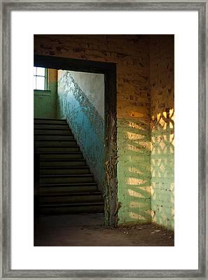 Shadowplay Framed Print by Rachel Tine