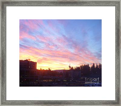 Shadows And Color In The Pacific Northwest Framed Print by Alexander Van Berg