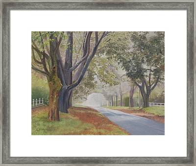 Shadow And Fog Down Beautiful Atlantic Avenue Framed Print