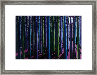 Shadows And Moonlight Framed Print