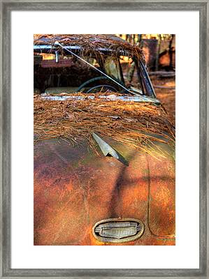 Shadows And Pine Straw On An Old Rusty Car Framed Print by Greg Mimbs
