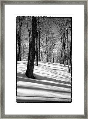 Shadows At Mccauley Mountain Framed Print by David Patterson