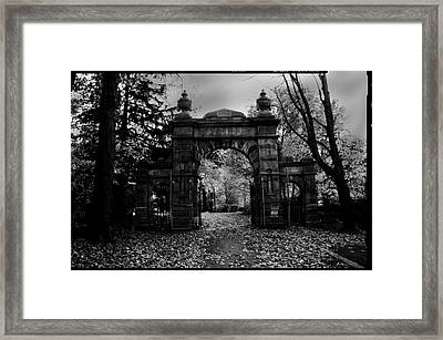 Shadows Flee Framed Print