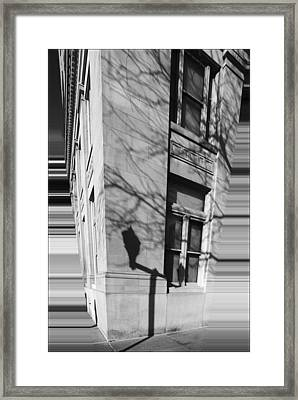 Shadows In The City Framed Print