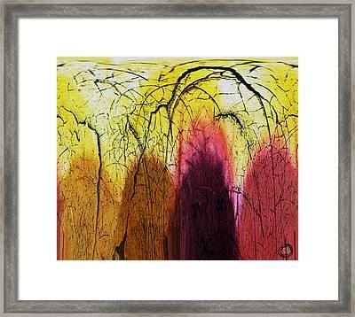 Shadows In The Grove Framed Print