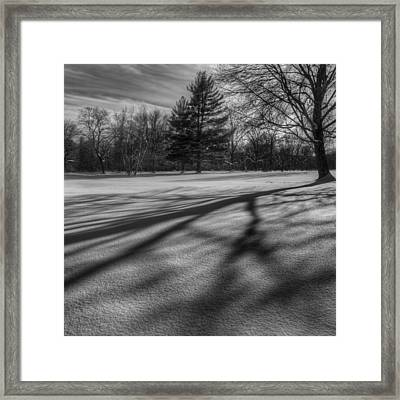 Shadows In The Park Square Framed Print