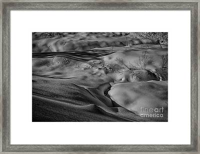 Shadows In The Snow Framed Print