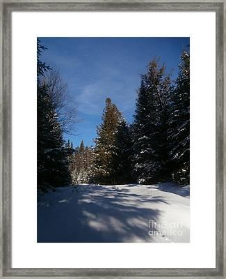 Shadows In The Snow Framed Print by Steven Valkenberg