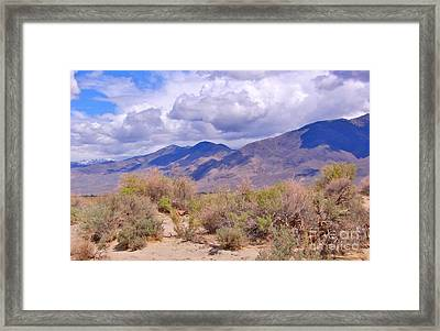 Framed Print featuring the photograph Shadows by Marilyn Diaz