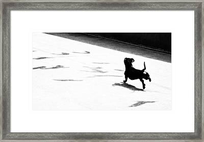 Shadows Of Lunch Framed Print by Alexander Senin