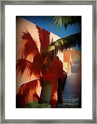 Shadows Of Palm Leaves Framed Print by John Malone